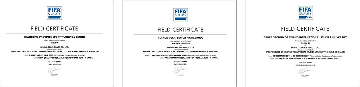 FIFA system