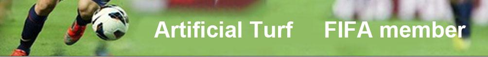 Artificial Turf FIFA member